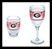 GA Tervis Wine Glasses